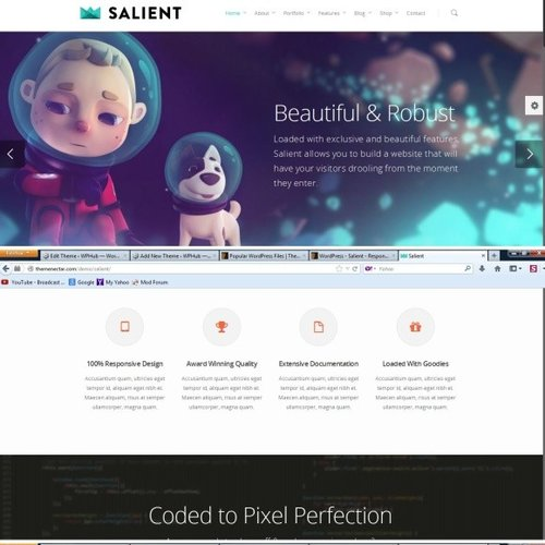 ThemeForest - Salient Review | BAD ?