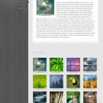 glider-elegant-themes-multipurpose-wordpress-theme
